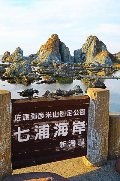 佐渡島19 七浦海岸ドライブ 高瀬の夫婦岩あたり・車窓風景 ☆夕日を追いかけながら
