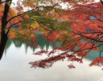 紅葉の南伊奈ケ湖