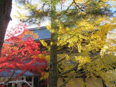 京都市・いしまるともりもり寿司で食事・南禅寺の紅葉を見て米原に
