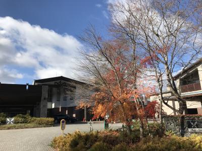 名残の紅葉と温泉、そして日本酒の旅