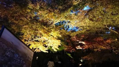 紅葉を求めて鎌倉へ