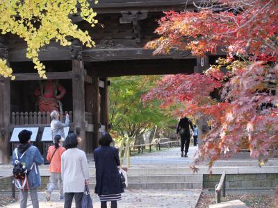東京自由が丘・九品仏浄真寺の紅葉2018を訪れて