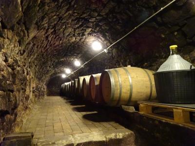 1802~トカイにワインを買いに行くのなら…