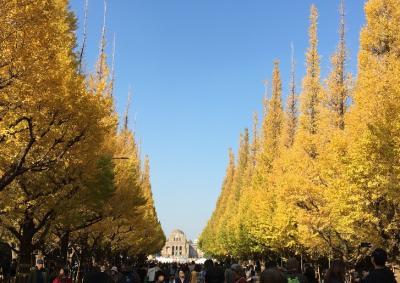 東京:神宮外苑のイチョウ並木~表参道~明治神宮