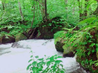 青森①奥入瀬渓流の絶景