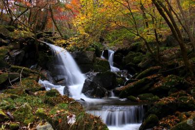 ◆東北最南端の紅葉~滝川渓谷 (銚子の口滝&桂木の滝)