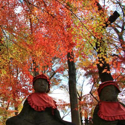 九品仏浄真寺の紅葉2018年12月