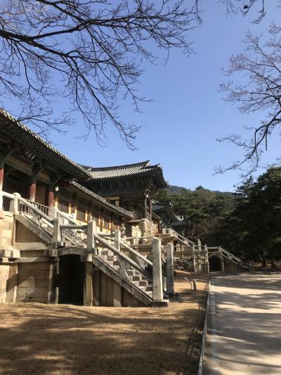 韓国を初めての人と釜山へ。その②