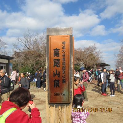 東京の山:高尾山ハイキング