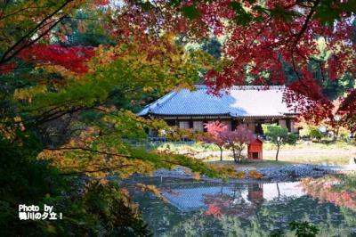 加茂 浄瑠璃寺の紅葉!2018年