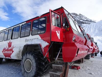 雪景色のバンフ、コロンビア大氷原の雪上車とアイスウォーク1日観光