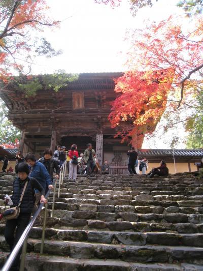 とうとう桂離宮、見てきました!      【1】《京都アートの旅 1日目-その1》     高雄へ、神護寺