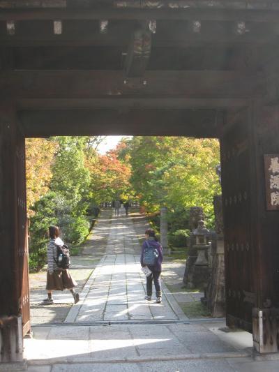 とうとう桂離宮、見てきました!      【6】《京都アートの旅 3日目-その1》     三十三間堂、養源院、智積院