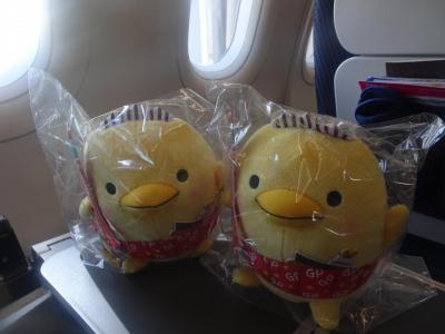 空飛ぶ 今治バリィさん 世界は愛とバリィさんで満ち溢れている 旅は青空 まるくんワンダーランド2018年 2019年へ夢の架け橋 さようなら平成 ありがとう ハロンボ♪
