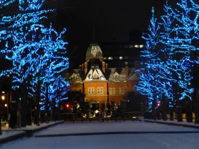 2018年 暮れ どこかにマイルを使って 第2弾・・・・・④夜の札幌駅付近散歩