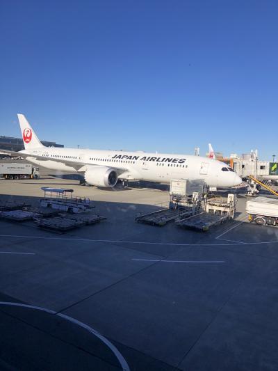 JALファーストクラスに乗るだけの旅~2日目・空港、機内編~