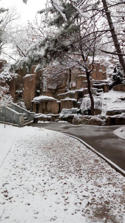 雪の203高地 in 旅順