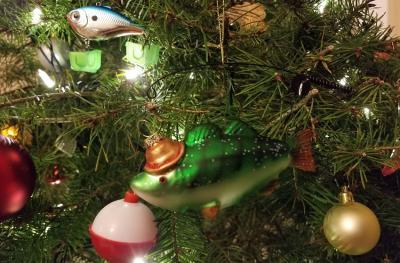 自分でクリスマスツリーを切りに行く!サンフランシスコ郊外 カリフォルニア。 Cut your own Christmas tree in Half Moon Bay, California
