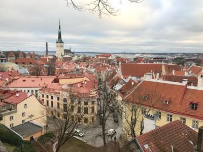 中世のヨーロッパの街並みが素敵なタリンのオールドタウン