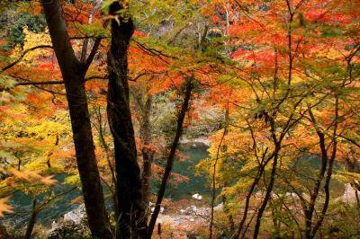 ◆平成最後 de 東北最後の紅葉~いわき龍神峡