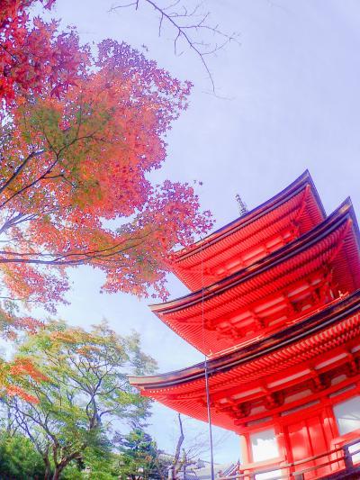 京都お散歩