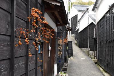 足助の古い町並み散策 ~平入や妻入の町家が混在する景観~(愛知)
