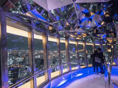 開業60周年 生まれ変わった東京タワーに行ってみた。東京タワー トップデッキツアー