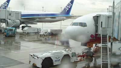 長崎空港でカステラを買って帰るだけの旅。ANA 777-200 HELLO 2020 JET