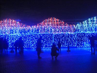 大阪 寺が池公園でクリスマスイルミネーション