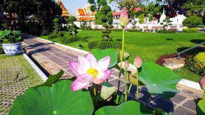 今年もお疲れ様旅行inバンコク前半