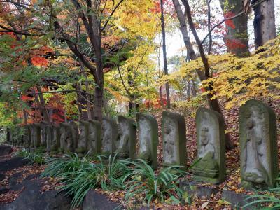 秋の九品仏浄真寺 2018