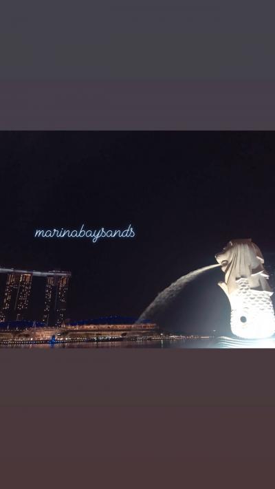 シンガポール旅行②日目~マーライオンとご対面~