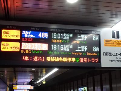 JL804便で臺灣桃園機場から日本成田空港へ、のちに帰還。