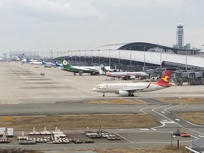 関西空港へ、出迎え送迎ついでに飛行機堪能