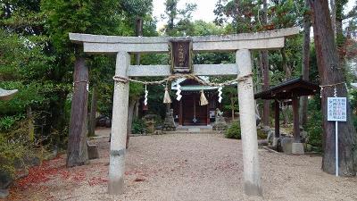 朝食後、歩いて清荒神清澄寺を参拝してきました その1。