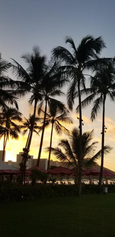 Hawaii☆二人旅☆2018☆《6日目☆ホノルル~大阪(関空)帰路》