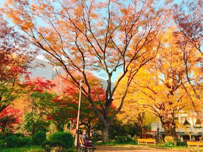日比谷公園の紅葉、東京、2017.11