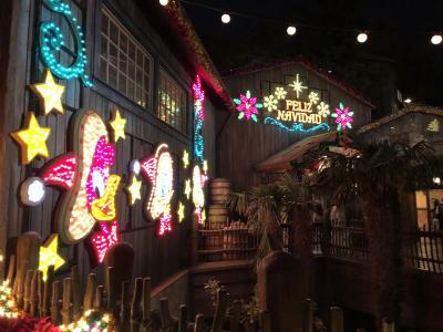 クリスマスディズニー☆ in TDS⑤ ~夜の素敵なクリスマスTDS★編~