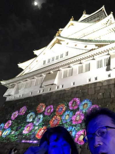 2018年12月SAKUYALUMINA大坂城ナイトウォーク