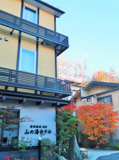 草津温泉-1 山の湯ホテル ツインルームに宿泊/夕食は外で ☆パン中心の軽朝食付きで