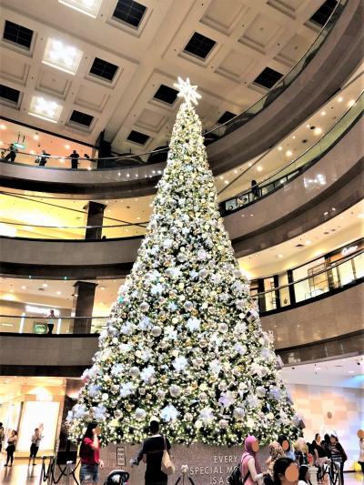 2018 シンガポールのXmas  ゚・*:.。:* ④ オーチャード散策 後編*ランチ&お買い物  ゚・*:.。:*