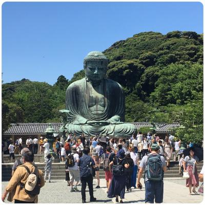 鎌倉日帰 : 御守り返納と大仏、長谷寺