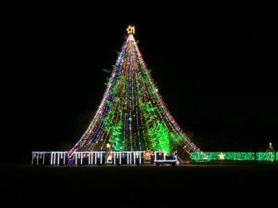 宮ケ瀬のジャンボクリスマスツリー