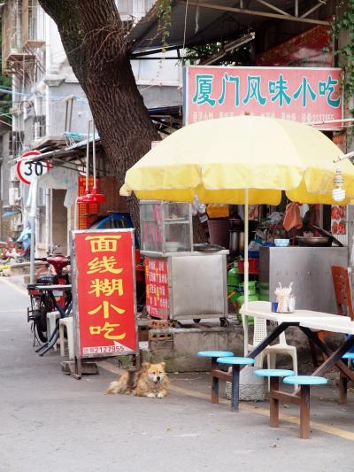 台湾 金門島からフェリーに乗って中国 厦門へ 厦門京辰酒店宿泊 ランチは厦門名物 沙茶面 バスに乗って南普陀寺観光に行こう