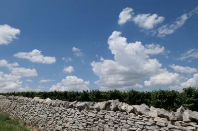 美しき南イタリア旅行♪ Vol.744(第25日)☆Bari→Castel del Monte:憧れのカステル・デル・モンテへ♪