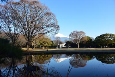 散歩 2018.12.19 =晴れて綺麗な富士山が見えました=