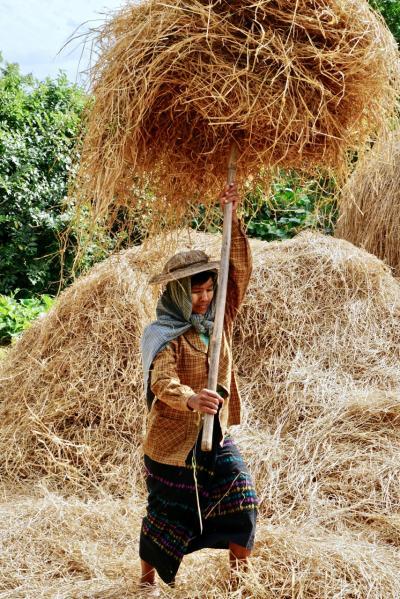 笑顔に癒されたミャンマーの旅・モンユワ・農家に行ってみた
