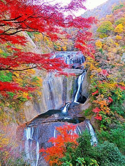 大子-4 袋田の滝 第2観瀑台から全景を眺め ☆紅葉の時季・茨城県民の日で無料