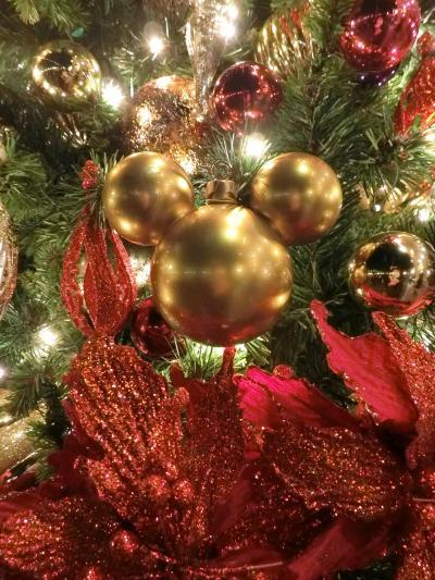 初のファミリーディズニー☆初の誕生日IN クリスマスのTDL☆Part1