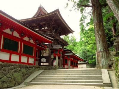 石上神宮と今井町を歩く